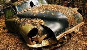 McLean's Auto Wreckers Outing with Juraj Dolanjski
