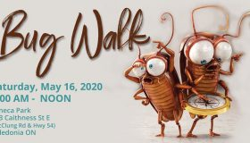 "Bug Walk 2020 – ""Note Date Change"""