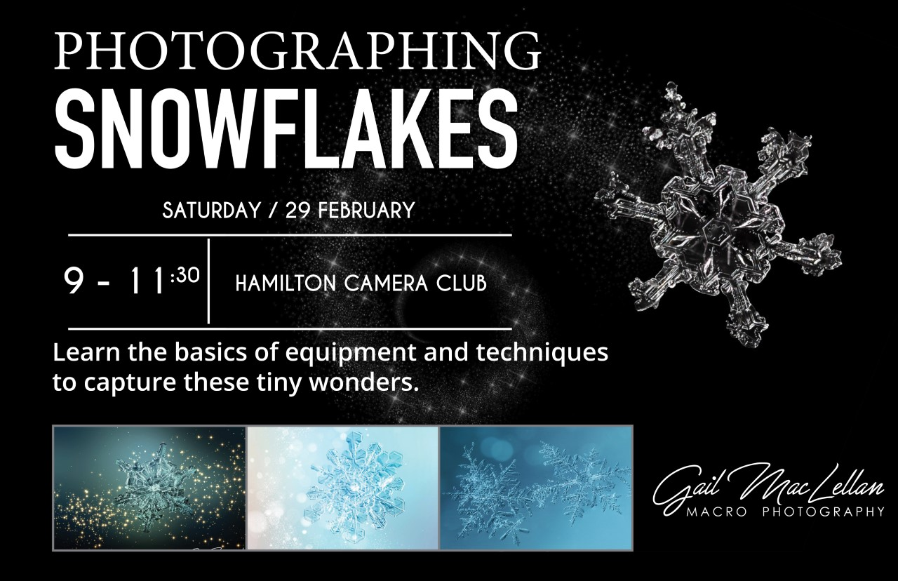 Workshop:  Snowflake Photography