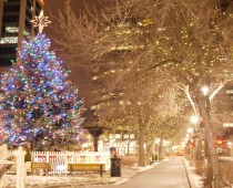 Gore Park Christmas/Central Library- 2015