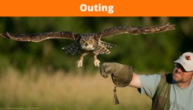 Canadian Raptor Conservancy Photography Outing