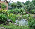 Garden Photography Opportunities