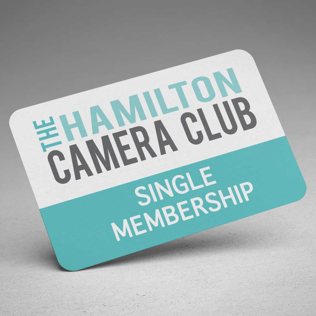 A grey and white Hamilton Camera Club membership card with the words Single Membership