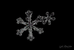 Two attached snowflakes on a black background